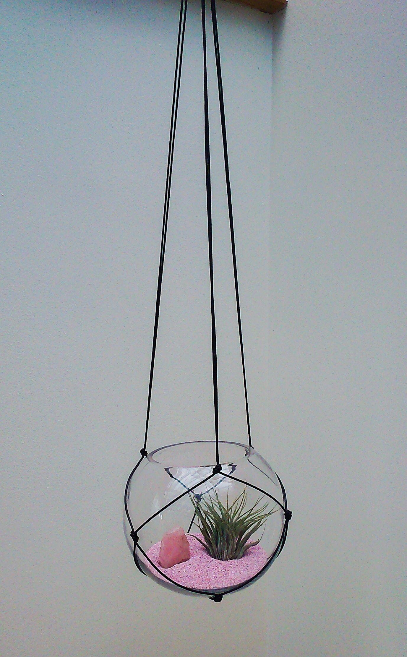 Air plant rose quartz macrame terrarium naturaleza pinterest