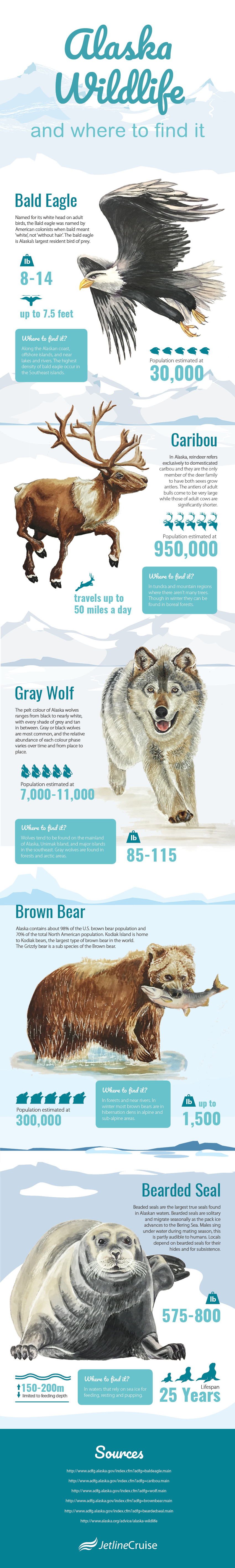 Alaska Wildlife and Where to Find It Infographic