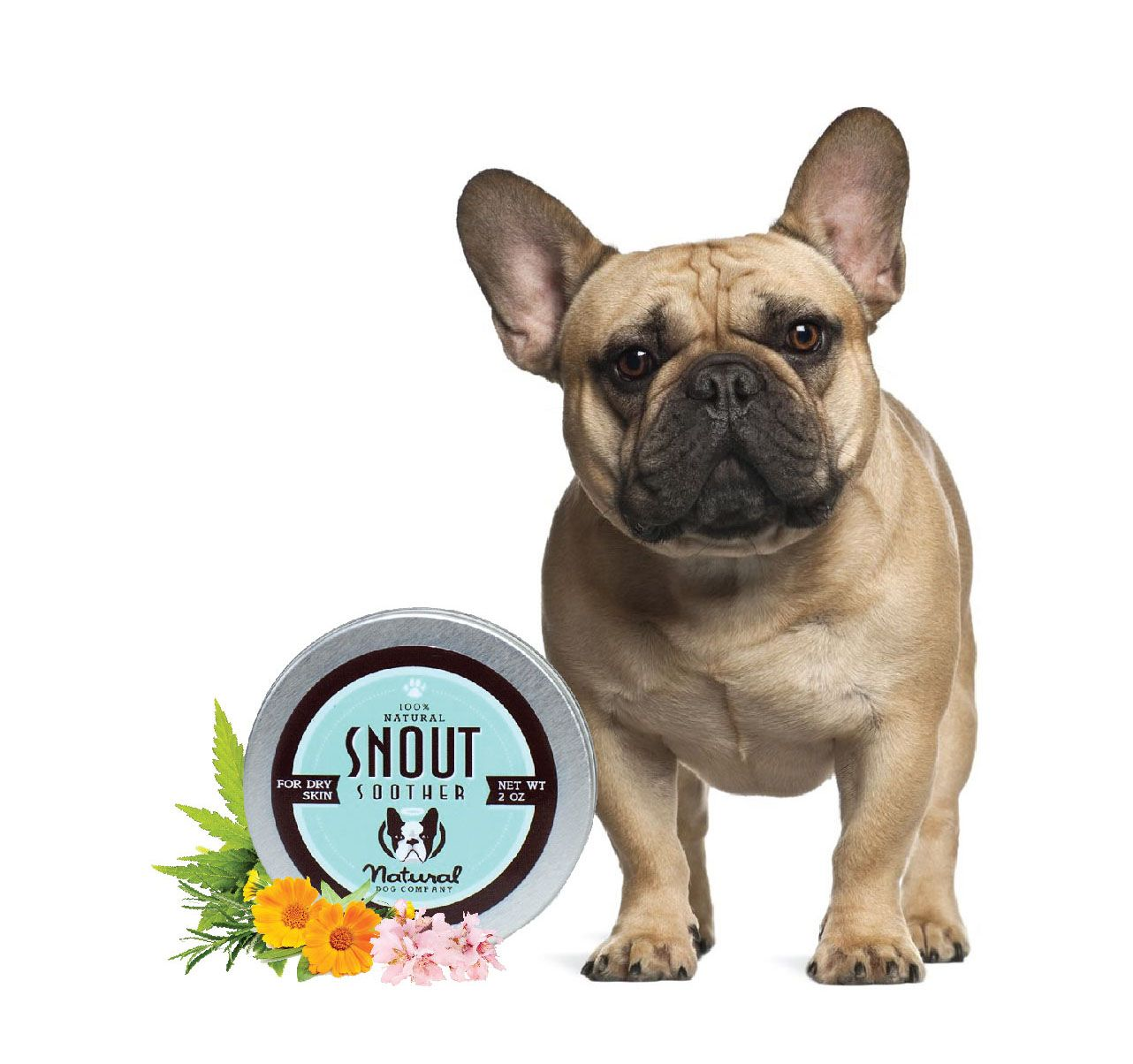 Snout Soother for Frenchie's with Dry Noses!