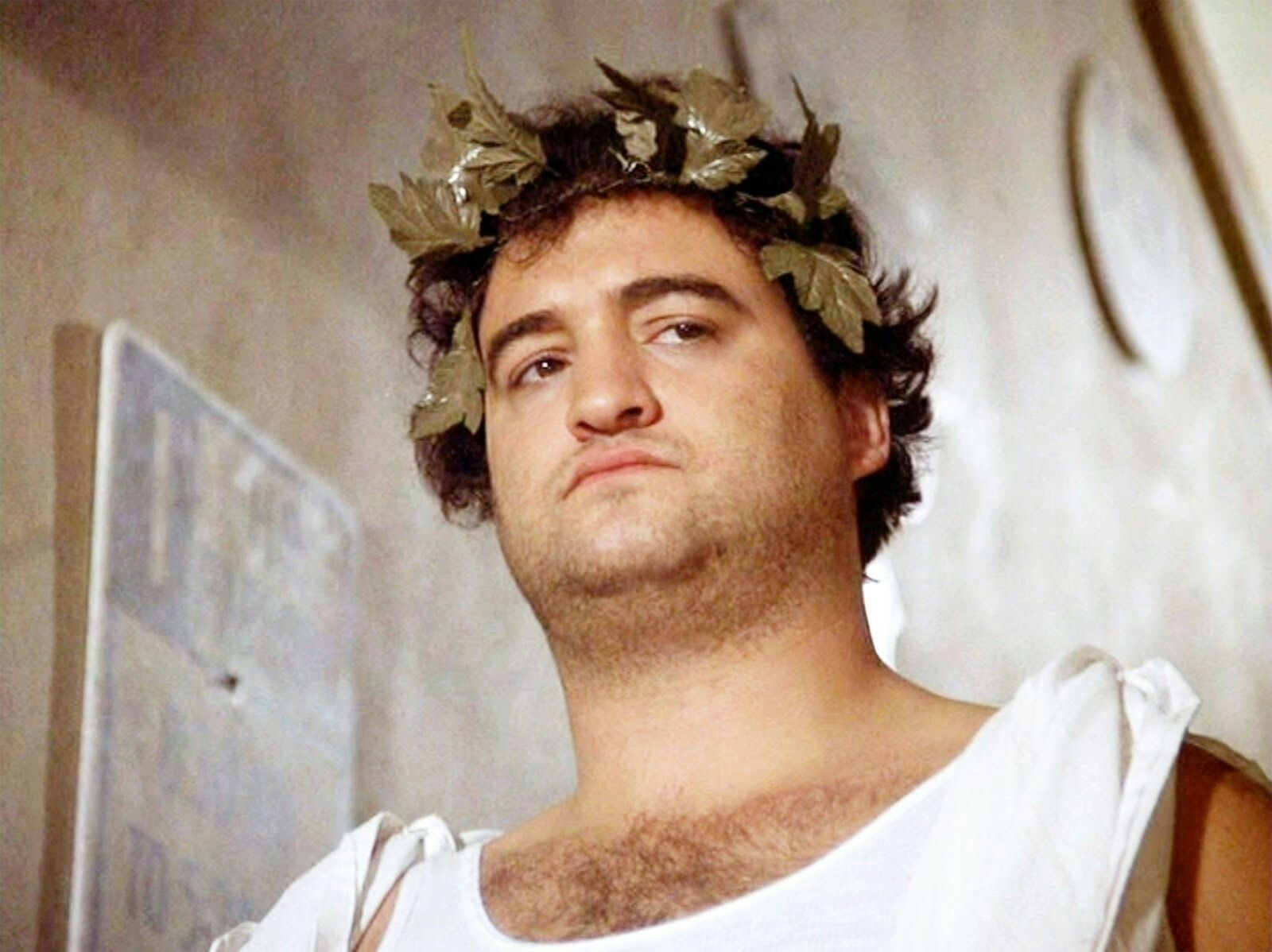 Image result for animal house toga