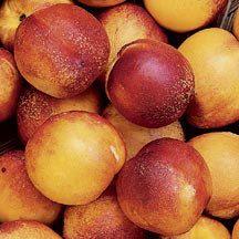Hardired Nectarine This New Nectarine From Ontario Canada Has