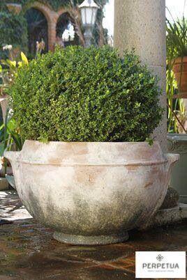 ®Perpetua muebles   #perpetua #muebles #macetas #macetones #plantas   Más información o catálogo completo www.perpetuamuebles.com