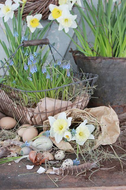 VIBEKE DESIGN: Creative with reuse and springlike crops!