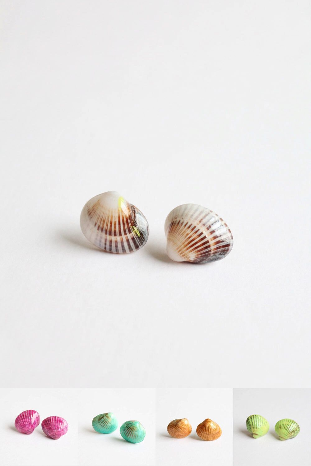 botanic seashell gallery collection stud jewellery wing shells blue earrings by
