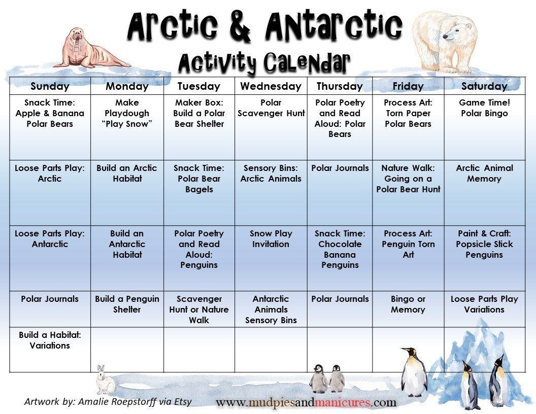 Polar Bears Books Amp Activities
