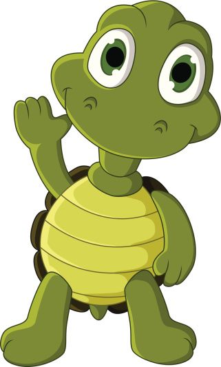 Image result for turtle cartoon