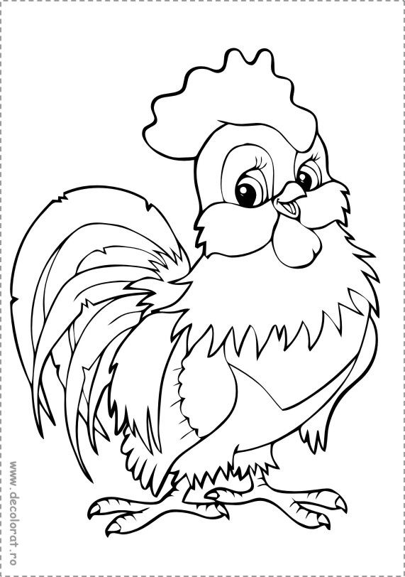 Pin by Andy on gardening | Gallinas, Moldes, Dibujos