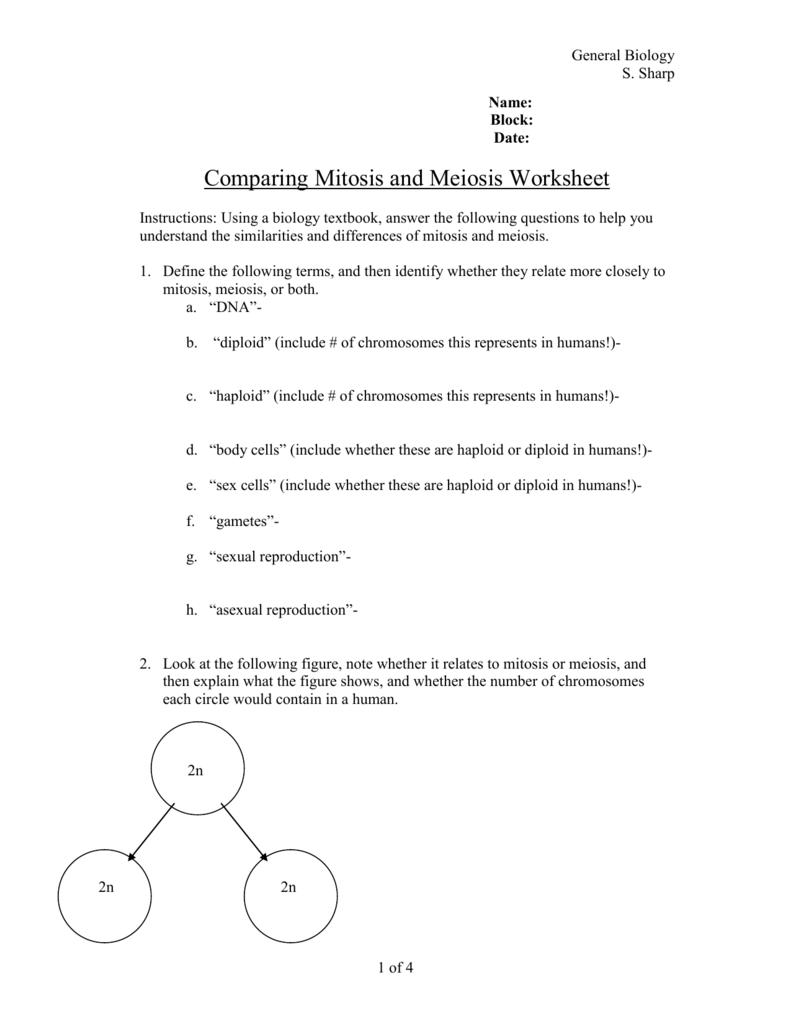 Pin By Deborah Iskander Onnebane On Mitosis Math Practice Worksheets Mitosis Math Worksheets