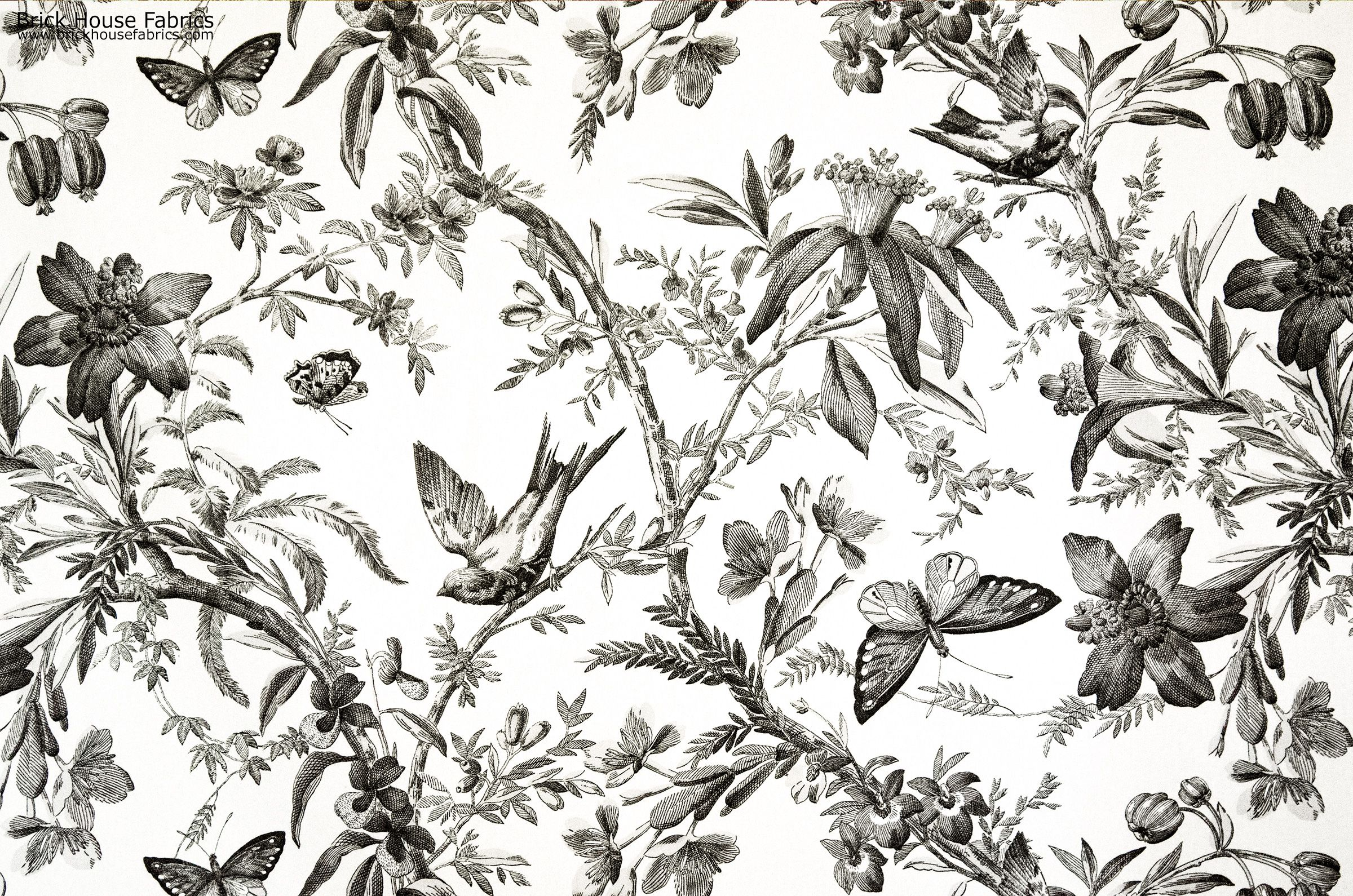 Black Toile Fabric Bird Erfly