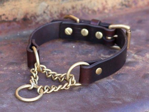 Ad Hoc Blue Dog Collar #dogsitting #TrainDogHilarious