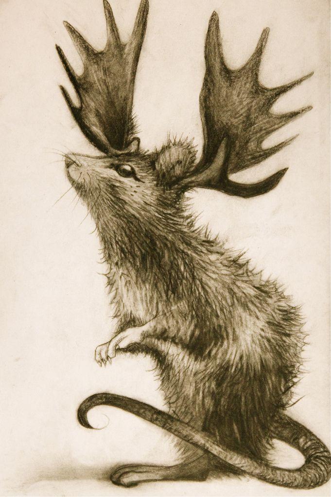 Creature 13 Hybrid Art Animal Art Projects Art
