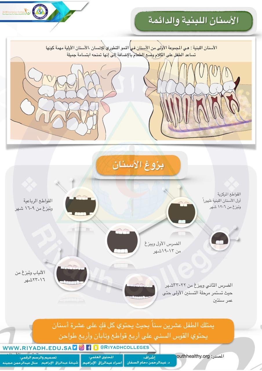 الأسنان اللبنية والدائمة Map Food Map Screenshot