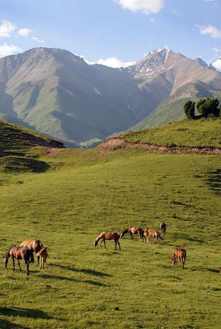 Most Beautiful Pages: Fergana Valley | Places to visit, Tourist ...