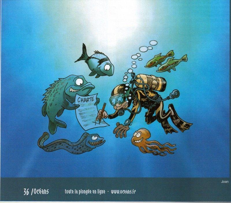 Dessin plongeur humour bing images plong e pinterest image search - Dessin plongeur ...