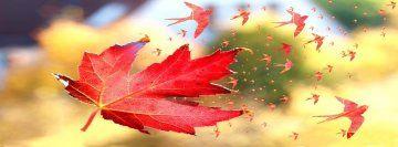 Naturaleza Potadas Para Facebook Fotos De Portada De Facebook Portadas Para Facebook Imagen Para Facebook