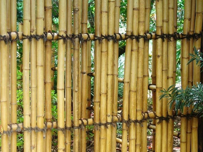 Some Easy Diy Bamboo Projects Bamboo Fence Bamboo Garden