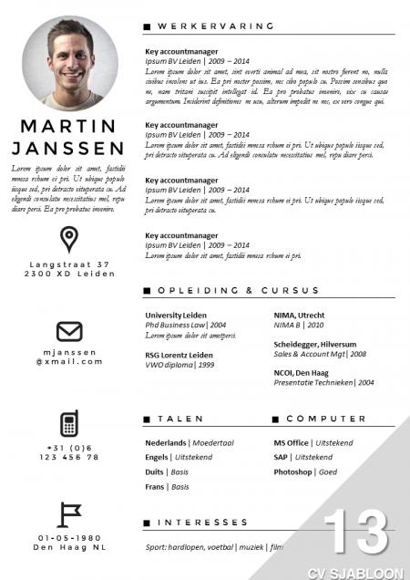 Opvallend CV met een professionele uitstraling. Eenvoudig zelf te