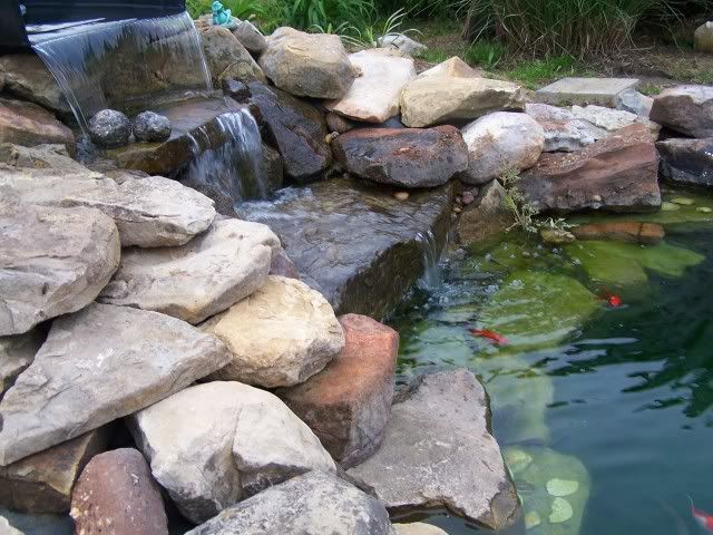 Image gallery pond rocks for Rock ponds designs