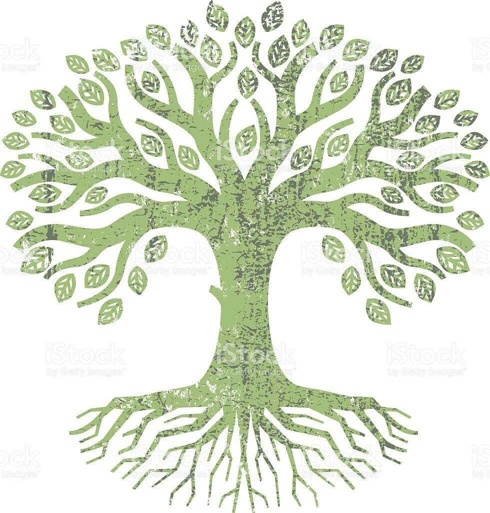 Pin by Danielle Timana on Tree logos | Pinterest | Tree logos