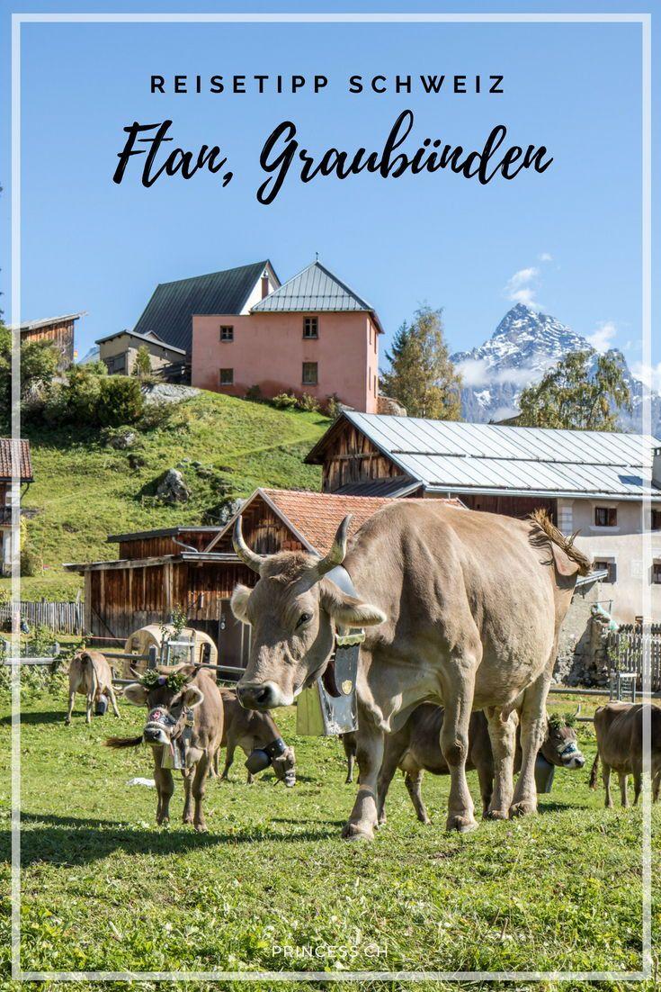 Schweiz Frankreich Tipp