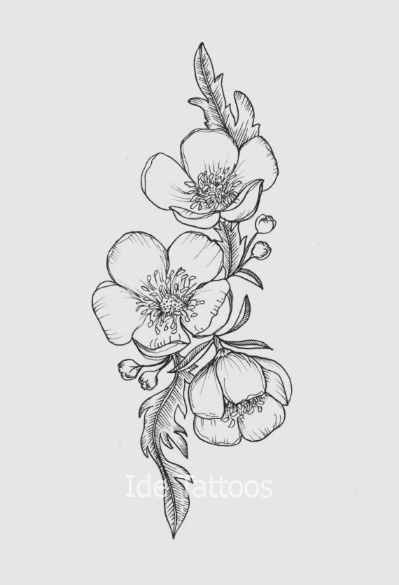 Buttercup Flower Tattoo 2 570 X 836 Flower Tattoo Designs Flower Tattoo Buttercup Flower
