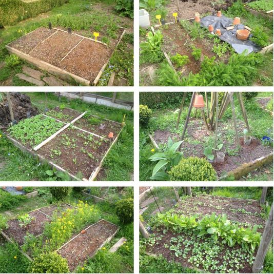 potager en carr s au mois d 39 avril projects to try pinterest permaculture and gardens. Black Bedroom Furniture Sets. Home Design Ideas