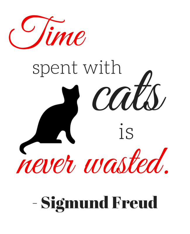 Time Spent With Cats Is Never Wasted Sigmund Freud Pet Cat Sigmund Freud Quotes Cat Lover Quotes Etche Cat Lover Quote Cat Quotes Funny Freud Quotes