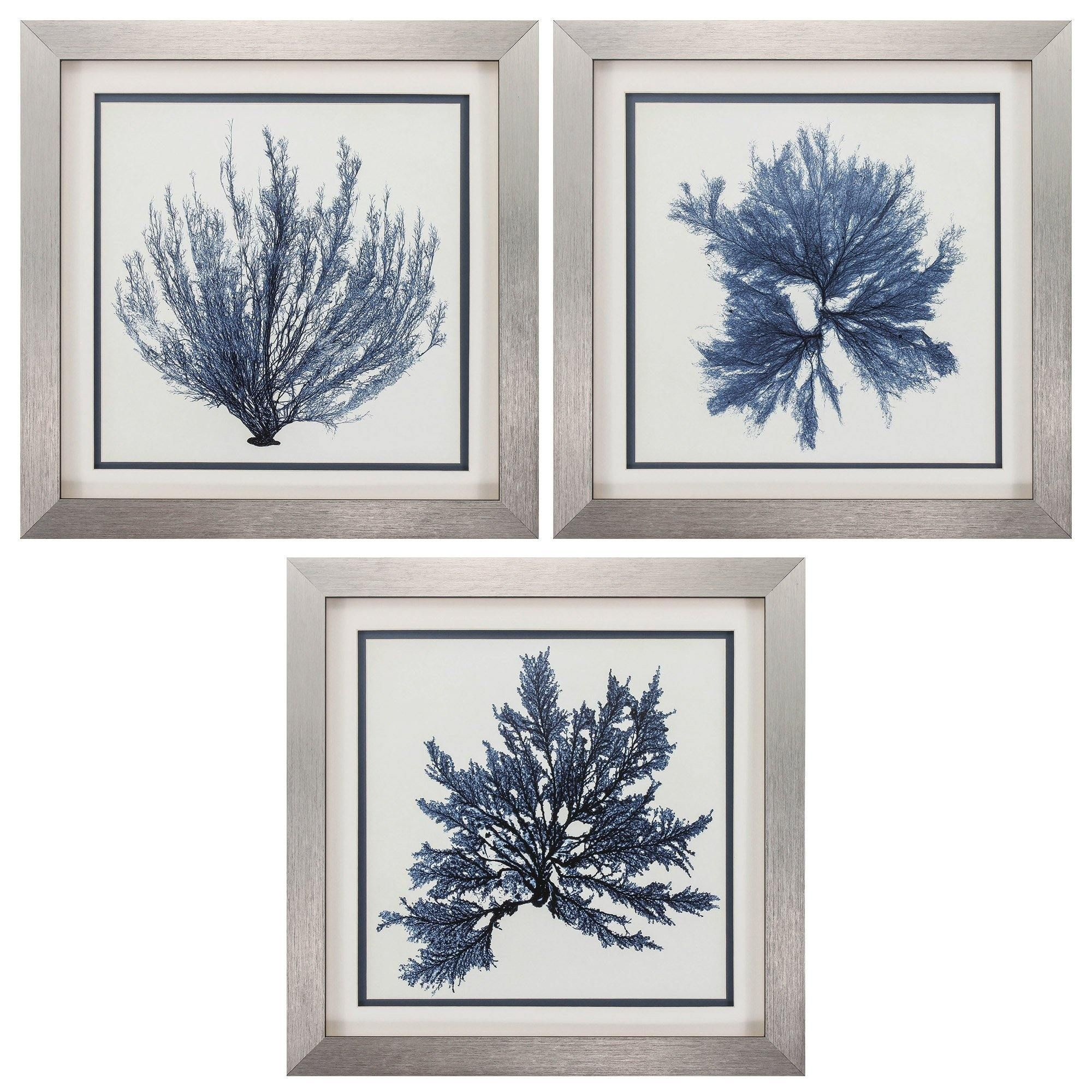 22 X 22 Silver Frame Coastal Seaweed Set Of 3 In 2021 Gallery Frame Set Beach Inspired Decor Blue Wall Art