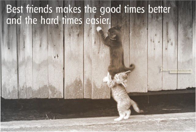 Best friends makes the good times better and the hard times easier.