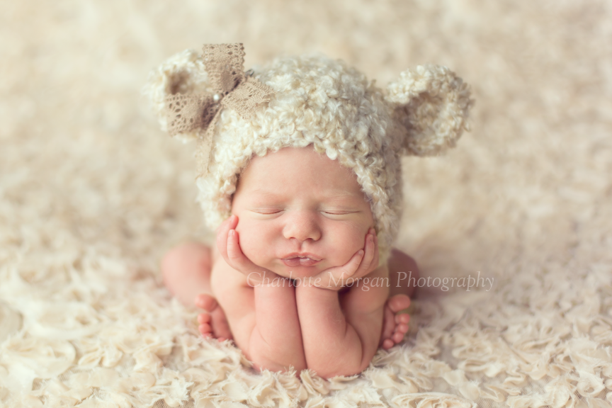 Frisco texas newborn girl teddy bear bonnet