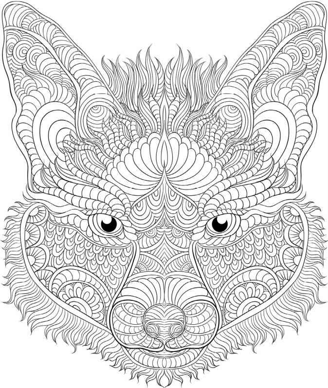 Animal The Coloring Book