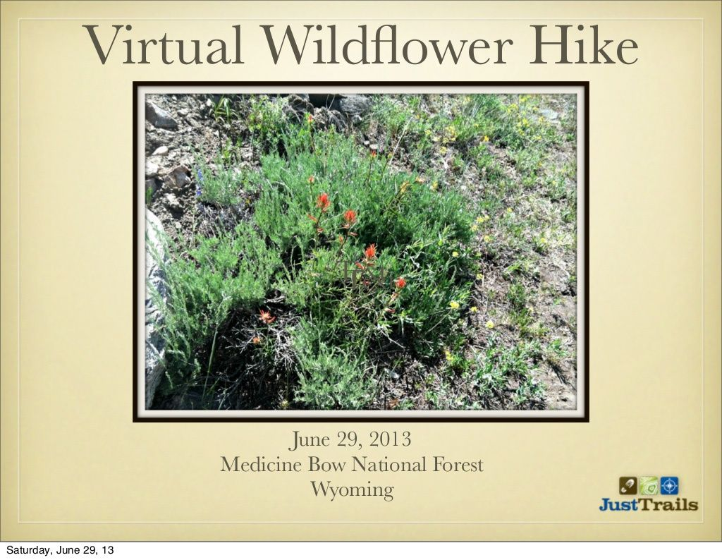 virtual-wildflower-hike by RebeccasTrails via Slideshare