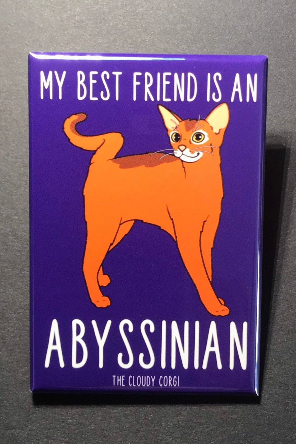 Abyssinian Cat Magnet Handmade Kitty Gifts and Kitchen Home Decor ...