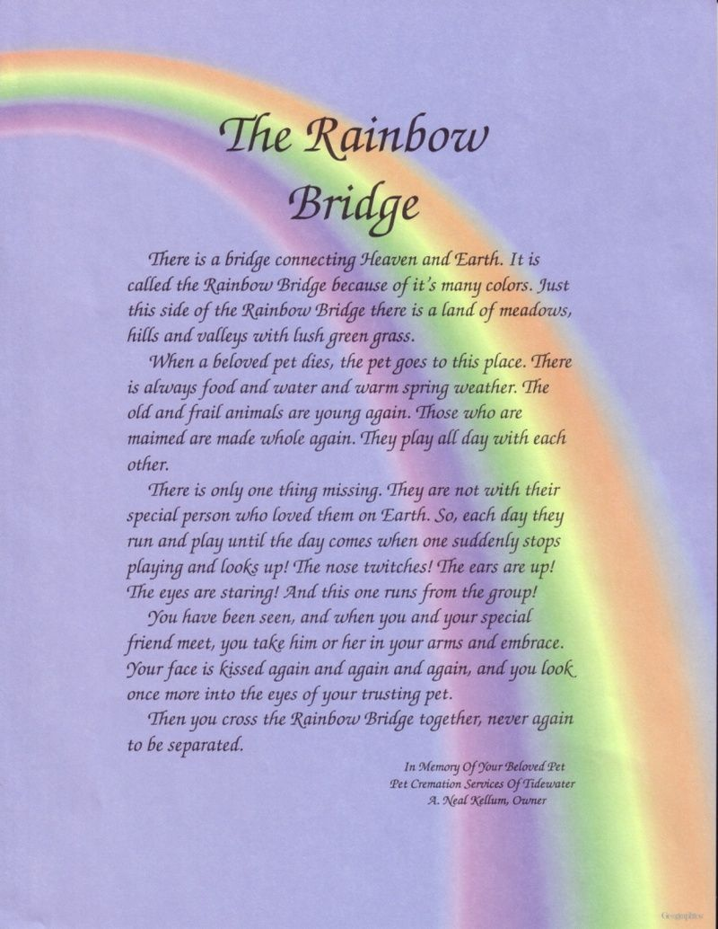 The New Rainbow Bridge The Rainbow Bridge Rainbow Bridge