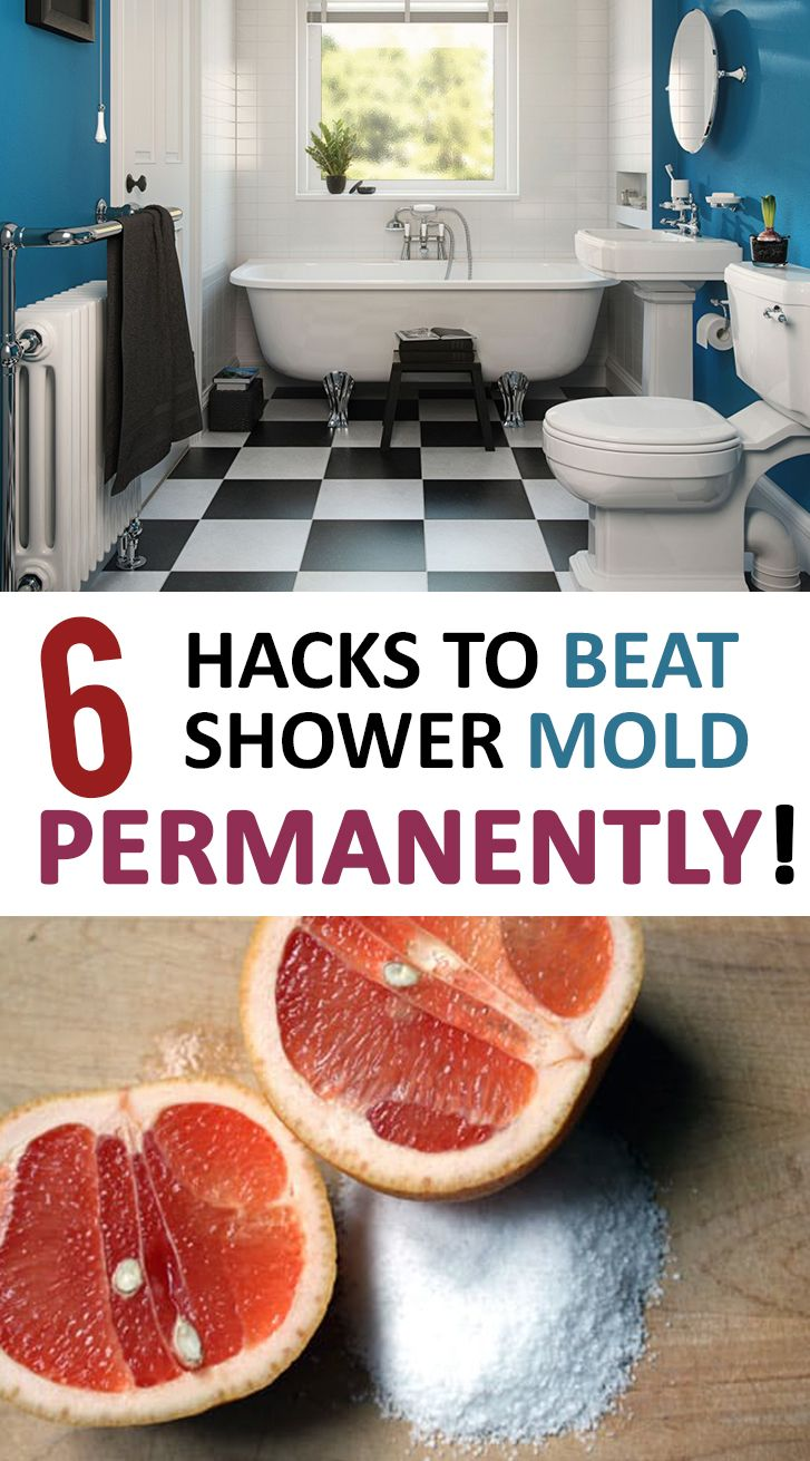 Top Ways To Clean Your Shower Mold