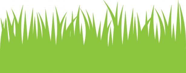 Grass cartoon. Tall clipart norwottuck lawn