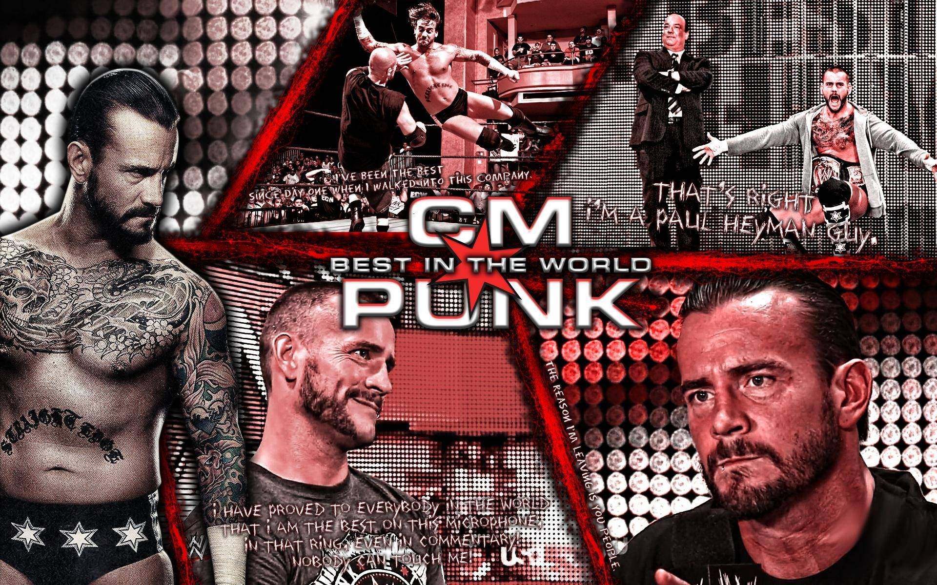 wwe cm punk wallpapers 2015 - wallpaper cave | free wallpapers
