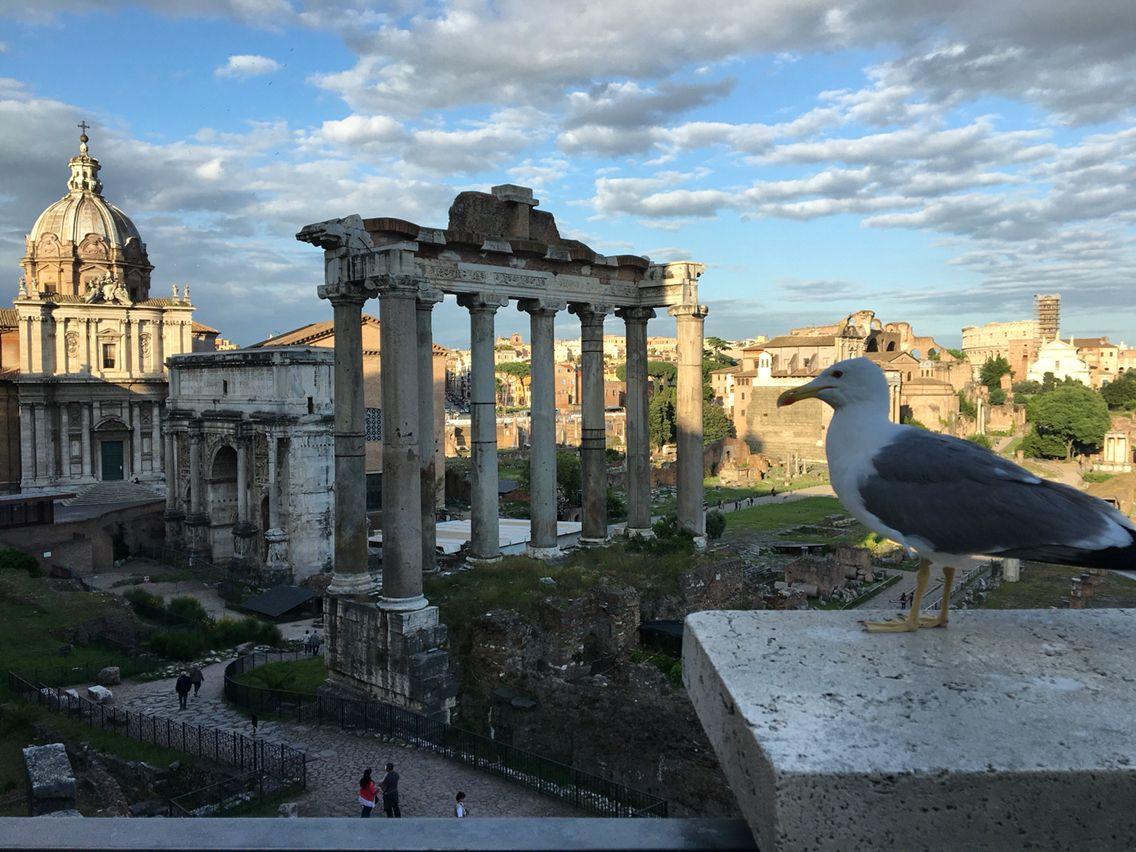Terrazza Del Campidoglio Roma Rome Terrazzo