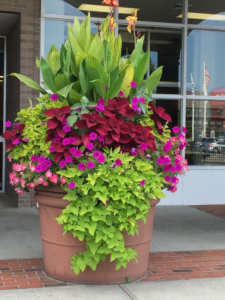 Hier finden Sie viele hübsche coole Blumentopfideen für die Haustür. Sie können kaufen ..... #flowerpot