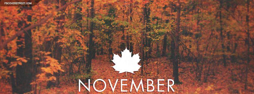 November Maple Leaf Forest Facebook Cover Wallpaper