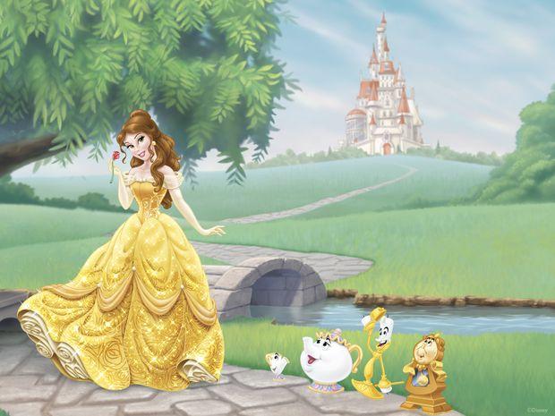 Wall Mural Children Fantasy Princess Cinderella Large Repositionable Vinyl Art