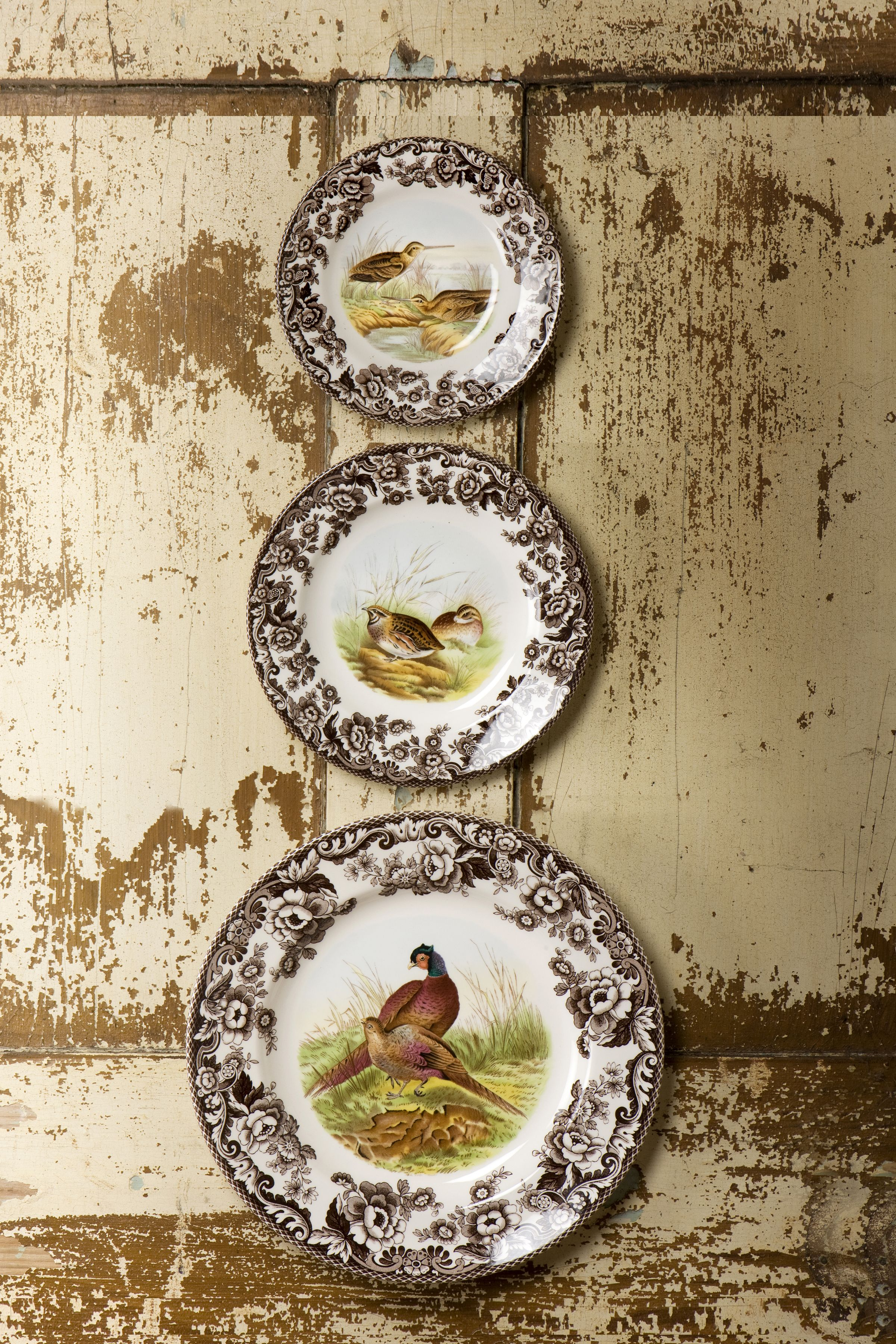 Mix And Match Plates From The Spode Woodland Collection