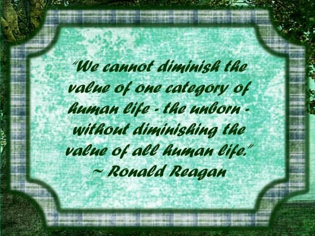 Value Of Human Life Quotes Quotesgram Humanity Pro Life