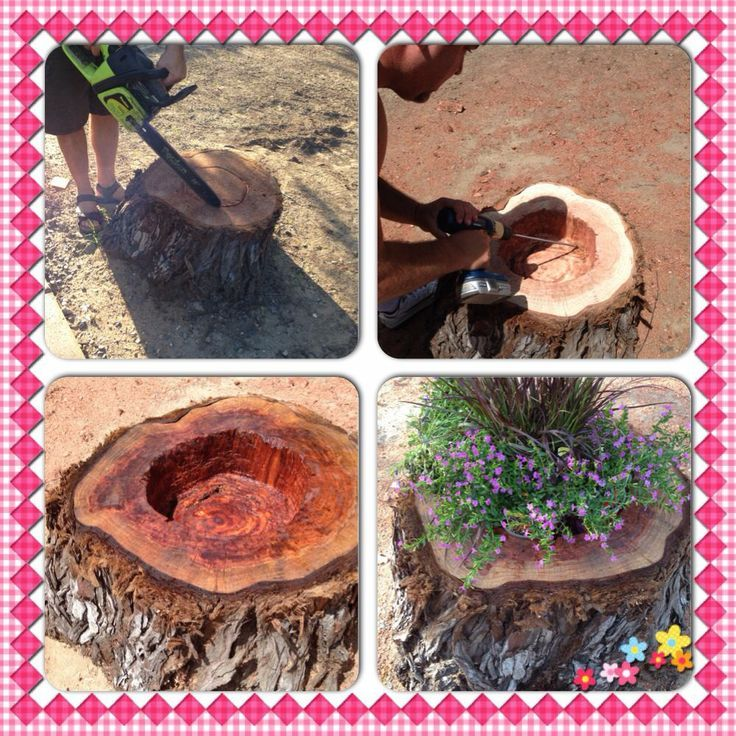 Untitled (With images) Tree stump planter, Herb planters