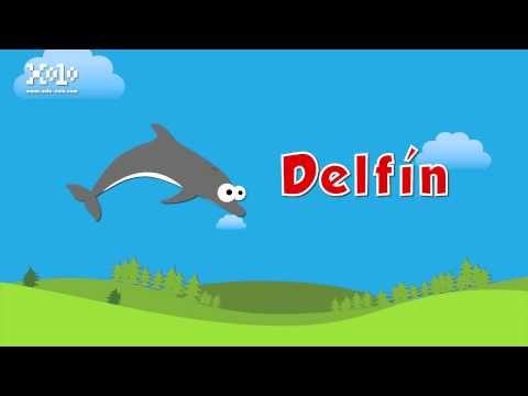 Palabras que inician con la letra D en español para niños - YouTube