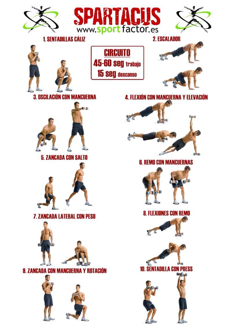 photo regarding Spartacus Workout Printable identify Spartacus work out thigh exercise session Spartacus exercise, 300