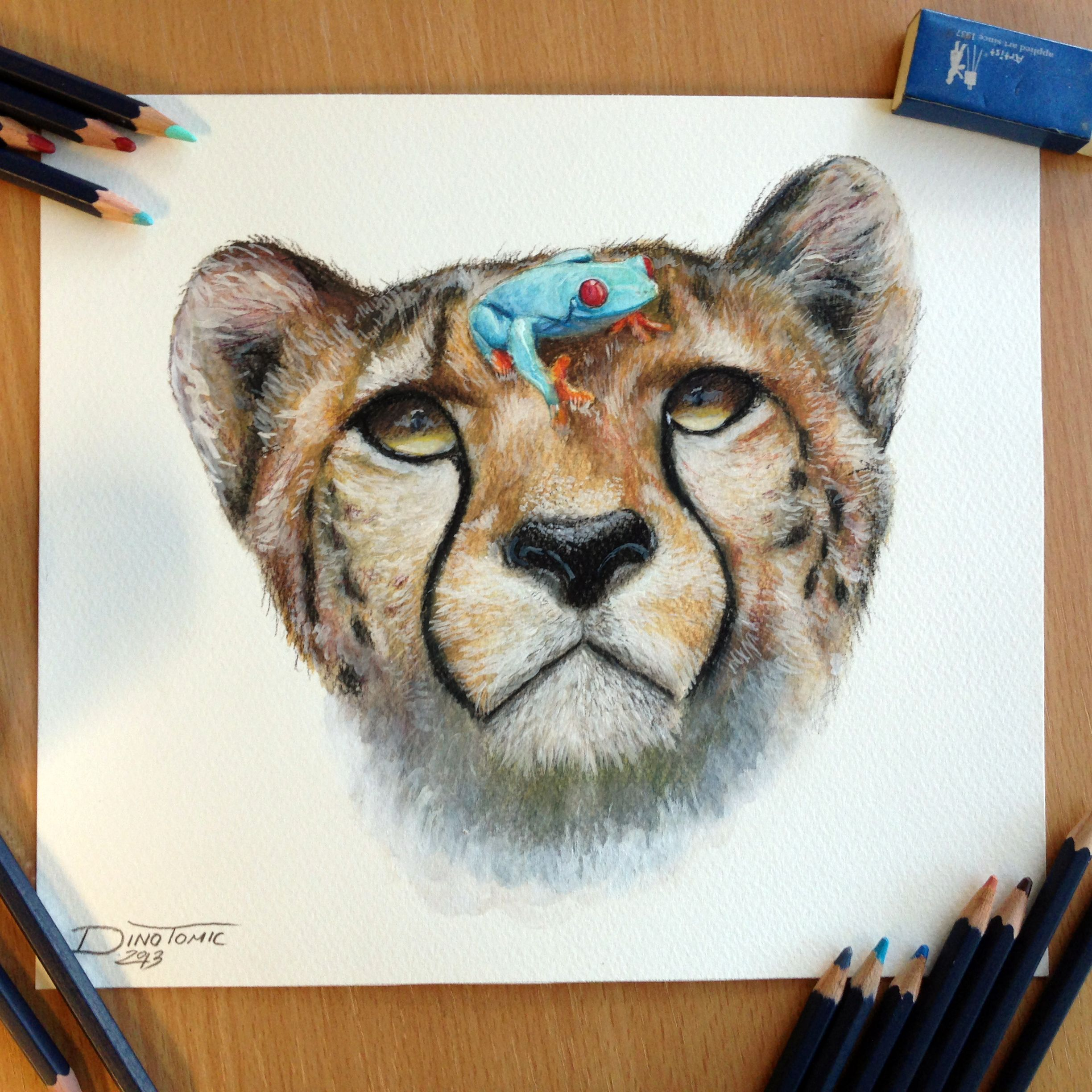 Cheetah and a frog pencil drawing by AtomiccircuS.deviantart.com on ...