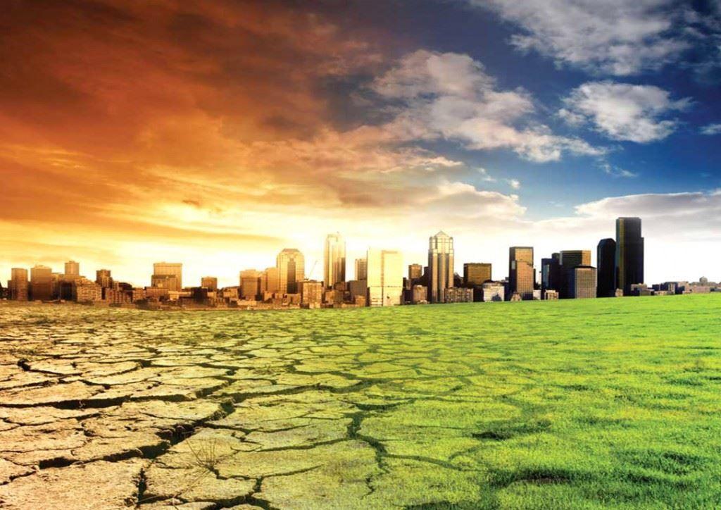 """Intervista a Fabio Mecca, enologo. """"I cambiamenti climatici? Ci sono, si sentono in maniera netta su tutto il territorio italiano, iniziano a creare difficoltà oggettive per la coltivazione della vite"""""""