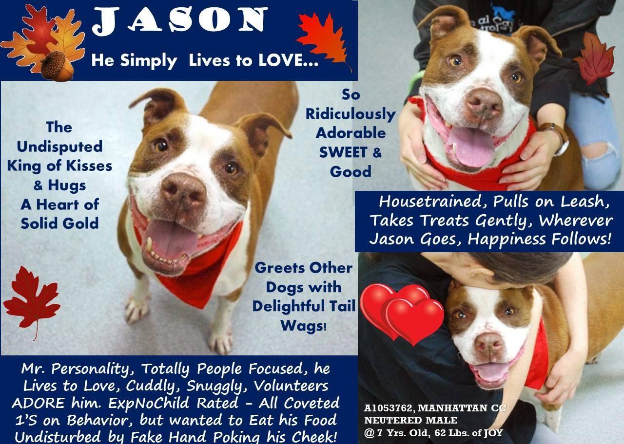 TO BE KILLED10/13/13 JASON NYC ACC ASON, A1053762