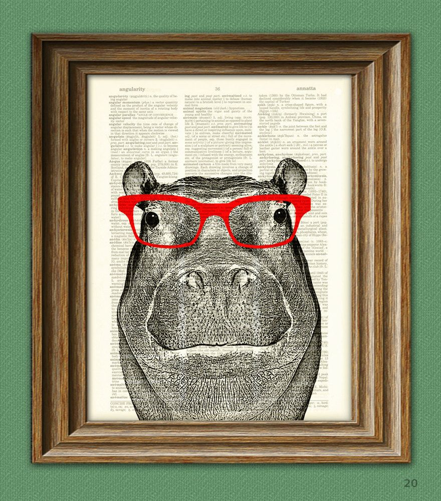 Hippopotamus Smarty Pants Hippo With Red Glasses Illustration